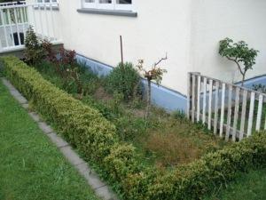 Garden before mulch